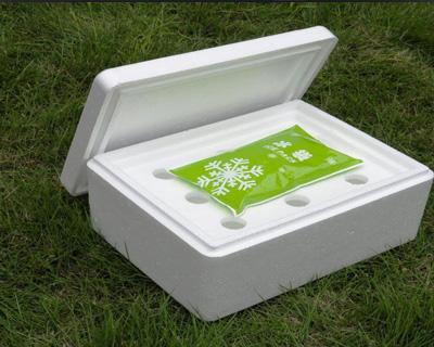 松茸泡沫包装盒